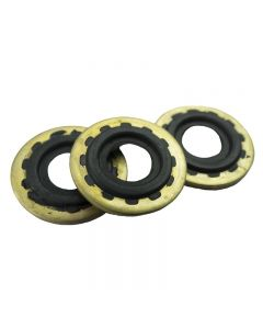O-Ring and Brass Washer Set